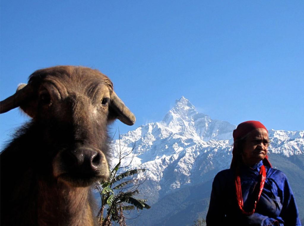 mardi-himal-pic1
